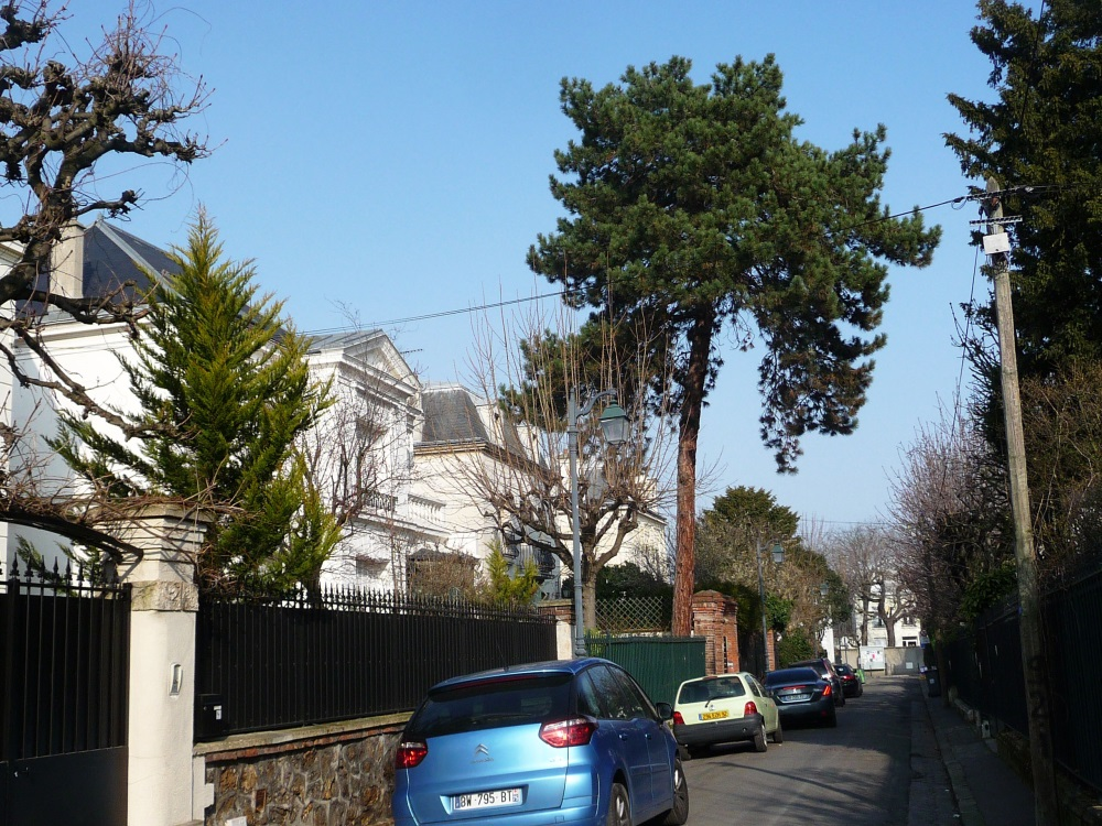 Agence Immobiliere Bois Colombes - Vivreà 92 Asni u00e8res sur Seine 92600  u00cele de France Paris prend l'air, Agence immobili u00e8re